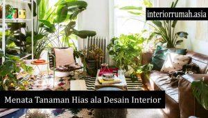 Menata Tanaman Hias ala Desain Interior